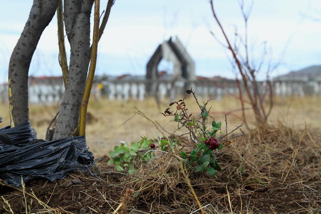 Норильский «Сад памяти»