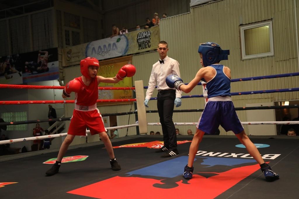 В Норильске в 14-й раз прошёл открытый краевой турнир по боксу на призы группы компаний «Жар.Птица»
