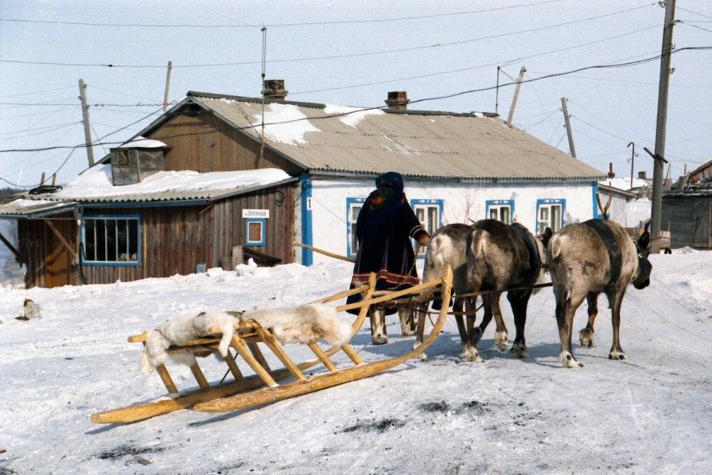 «Норникель» окажет грантовую поддержку коренным народам Севера