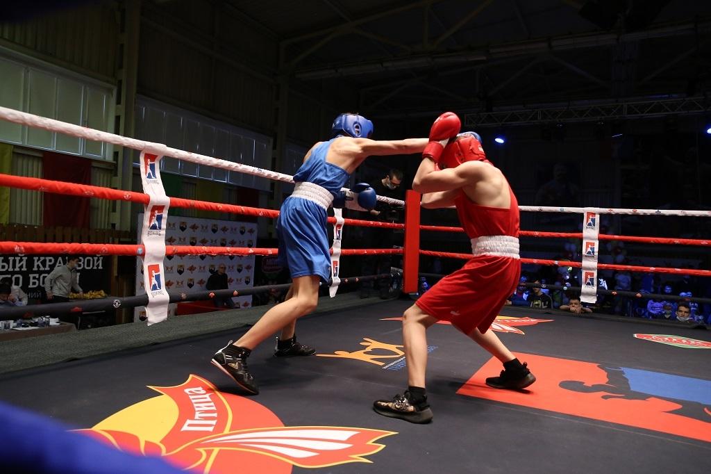 XV открытый краевой турнир по боксу на призы группы компаний «Жар. Птица»