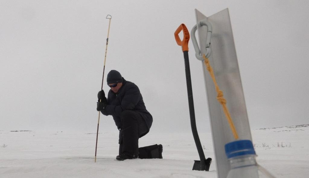 Результаты работы над проектом «Дорога ветров» в Норильске будут применимы и в других арктических территориях