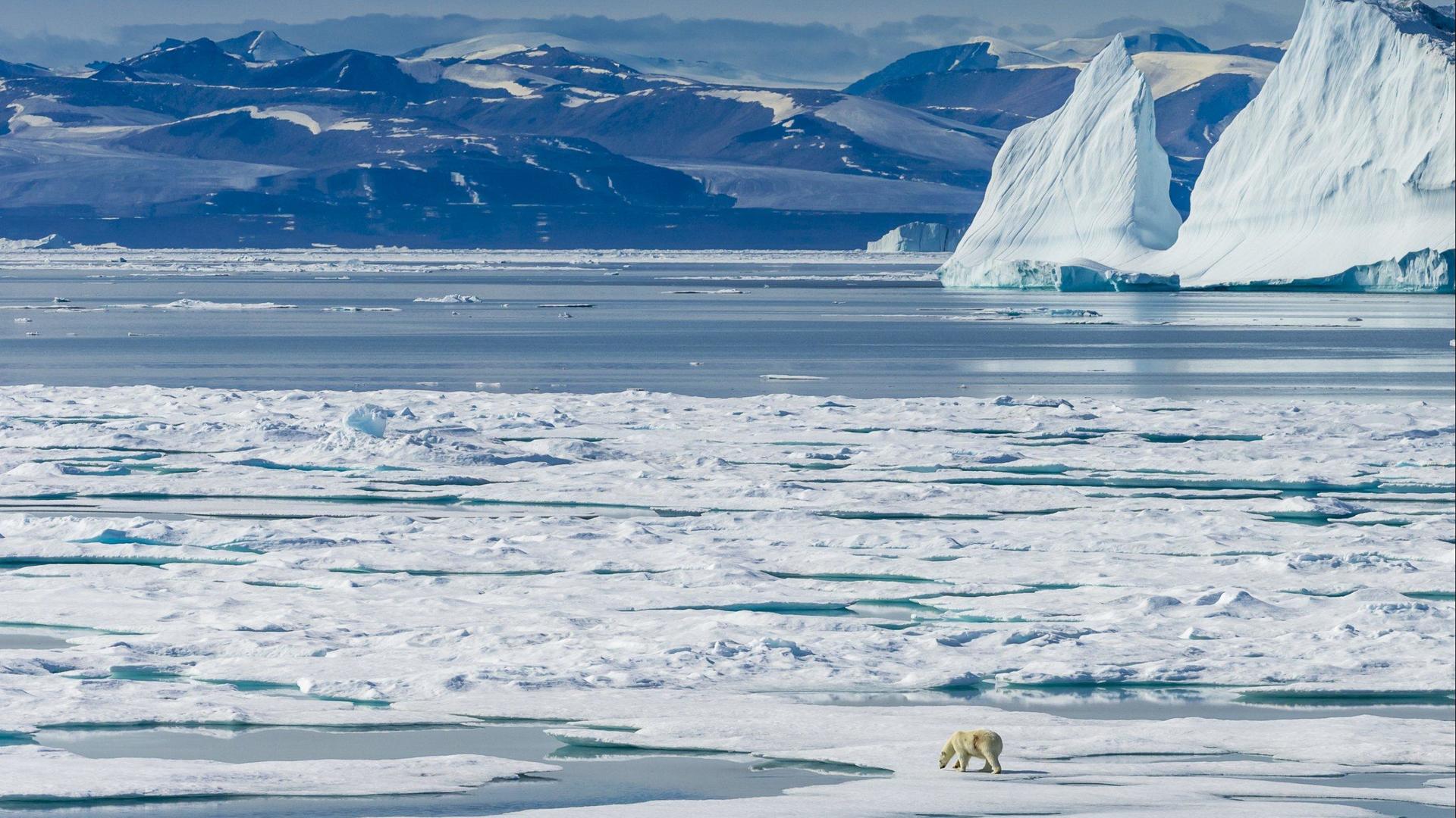 Туристические маршруты на Северный полюс