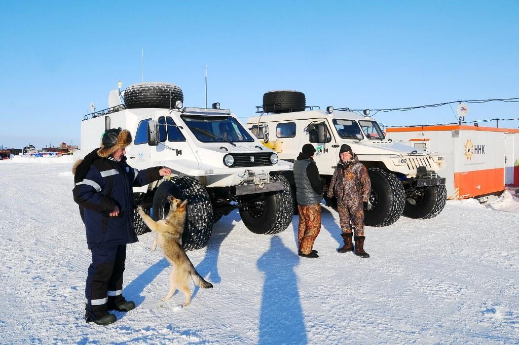 26 аргументов «за»: для желающих переехать в Арктику разработали систему преференций