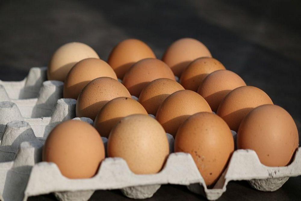 В Красноярском крае стали больше производить и есть яиц.