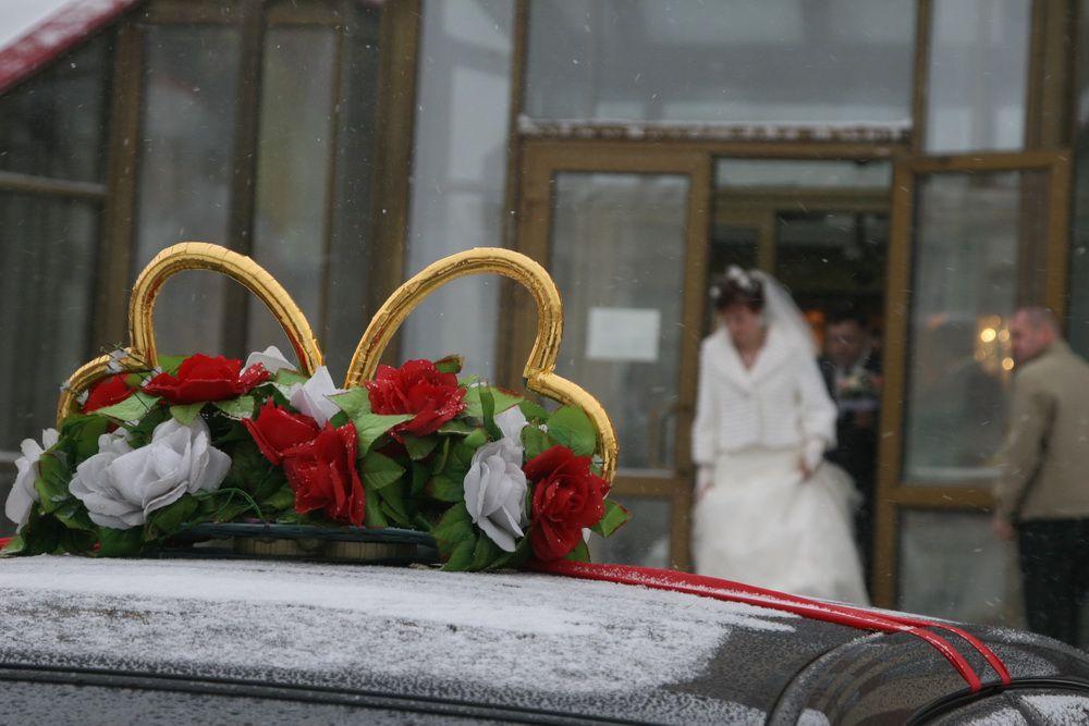 Сегодня, в День всех влюблённых, в Норильске поженятся 13 пар.