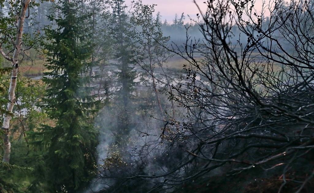 Норильчанам напоминают о правилах пожарной безопасности в тундре