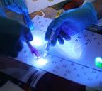 В лаборатории инновационного творчества «Фаблаб-Норильск» состоялось открытие Года науки и технологий