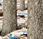 Из вторсырья производится целый ряд бумажной продукции, в первую очередь картон и туалетная бумага, а также отдельные виды стройматериалов. Себестоимость такой продукции на порядок меньше аналогов из других материалов, а учитывая то, что бумагу и кар